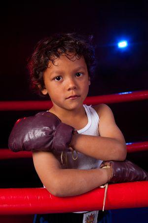 Boxer-1692.jpg